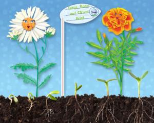 DPP -- Sprout a Mini-Garden!
