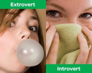 Introvert/Extrovert Quiz