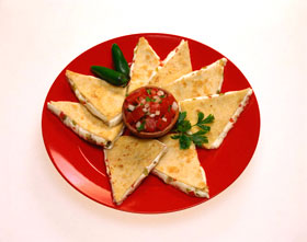 3CHEERS-FOR-ANIMALS-ADULT-GUIDE-QUESADILLAS
