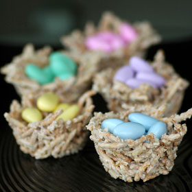 3CHEERS-FOR-ANIMALS-INCREDIBLE-EDIBLE-NESTS