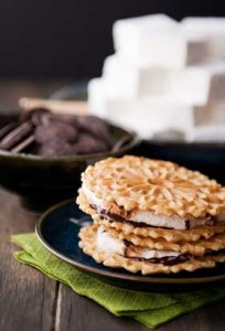 YOUR-VOICE-GOURMET-SMORES